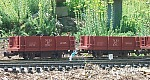 This photo by Wil Davis in 2003 shows two of our NB&DC ore cars, repainted from Aristo shorty gondolas. Click for a bigger photo.
