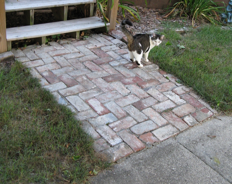 Prices On Landscaping Bricks : Pavers cost brick patio flagstone installing