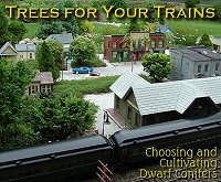 Click to learn more about choosing and maintaining conifers for your garden railroad.
